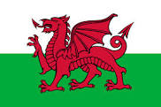Wales/St David's Day