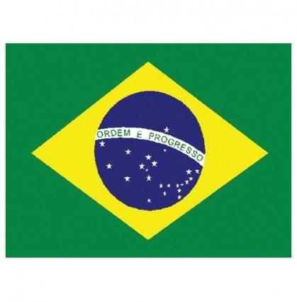 Large Polyester Flag - Brazil