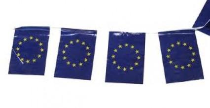 Flag Bunting - 4 metres - EU