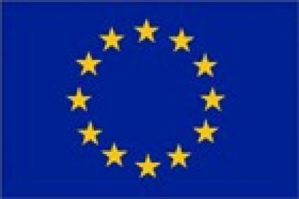 Large Polyester Flag - EU