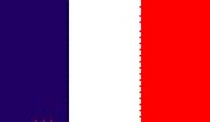 Hand Held Flags - France