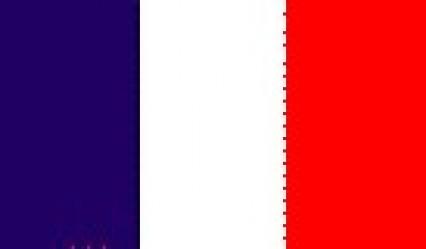 Large Polyester Flag - France