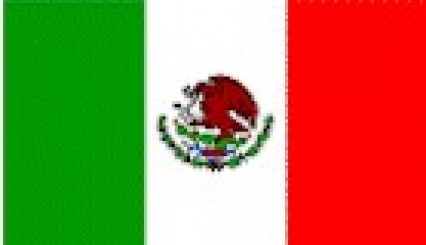 Hand Held Flags - Mexico