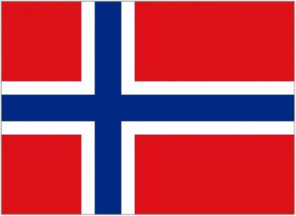 Hand Held Flags - Norway