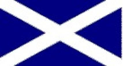 Large Polyester Flag - St Andrew/Scotland