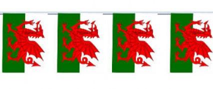 Flag Bunting - 4 metres - Wales
