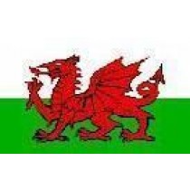 Large Polyester Flag - Wales
