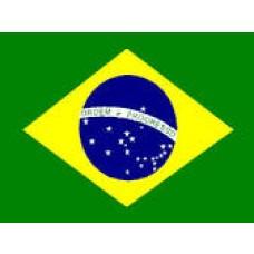 Brazil Hand Held Flags
