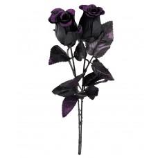Flower Black Rose