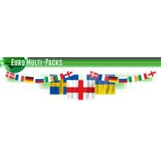 Euro 2016 Football Flag Bunting