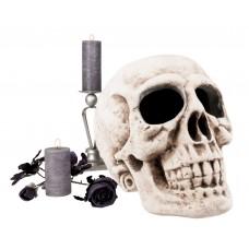 Decoration Skull 40x35cm
