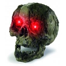 20cm B/Op Putrid Skull with Lit Eyes