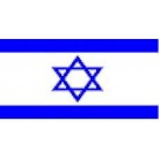 Large Polyester Flag - Israel