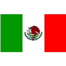 Large Polyester Flag - Mexico