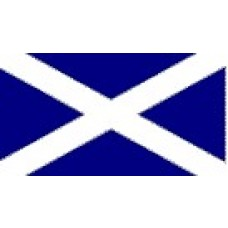 Large Polyester Flag - St Andrew/Scotland