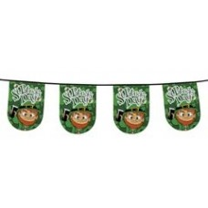 St Patrick's Day PE Bunting 6m